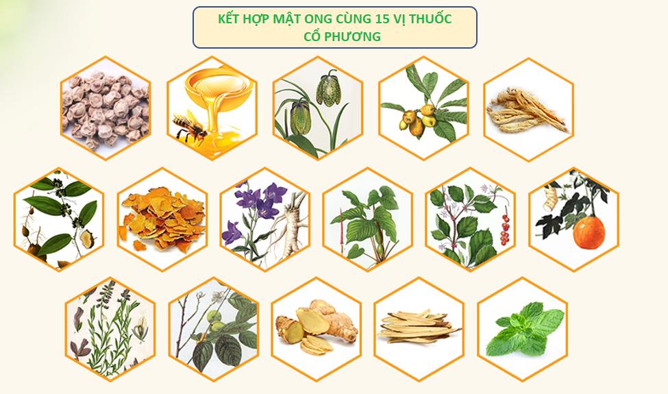 Thuốc ho Bảo Thanh có nguồn gốc từ bài thuốc cổ phương hơn 300 năm