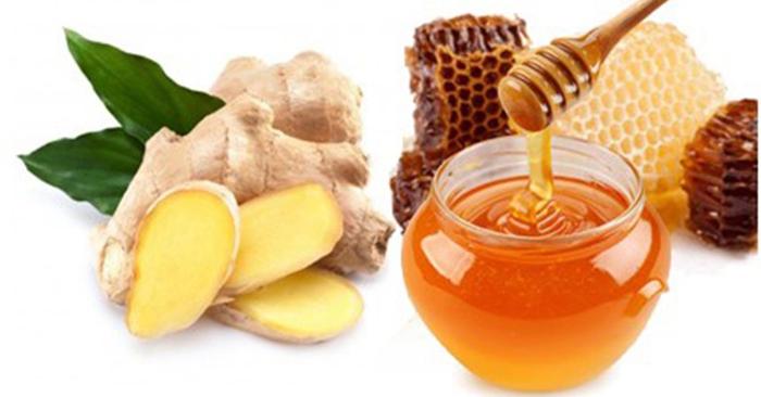 Gừng kết hợp với mật ong là bài thuốc trị ho rất tốt