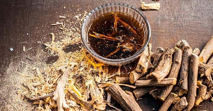 Cam thảo là vị dược liệu được sử dụng phổ biến trong đông y