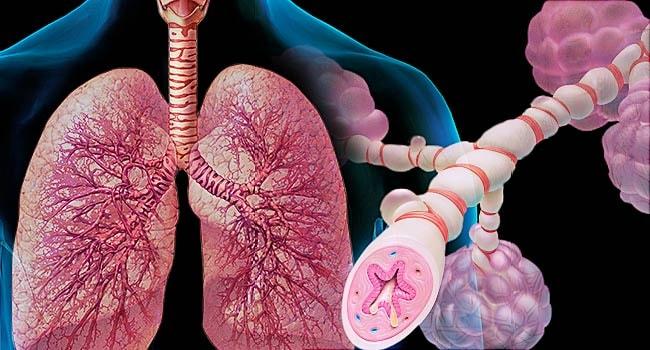Hen suyễn là một trong những chứng bệnh phổ biến gây ho