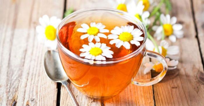 Tinh chất trong hoa cúc có tác dụng giảm đau