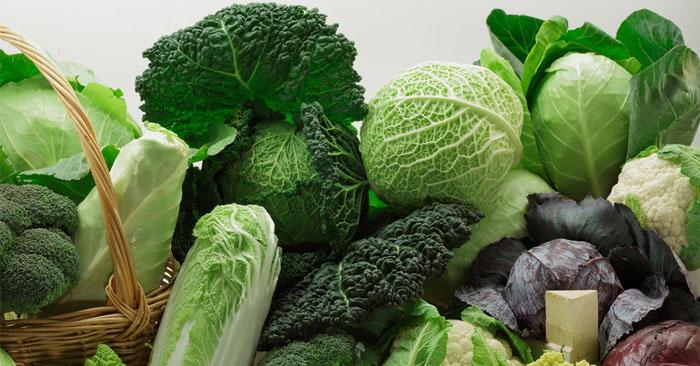 Viêm phổi nên ăn nhiều rau xanh